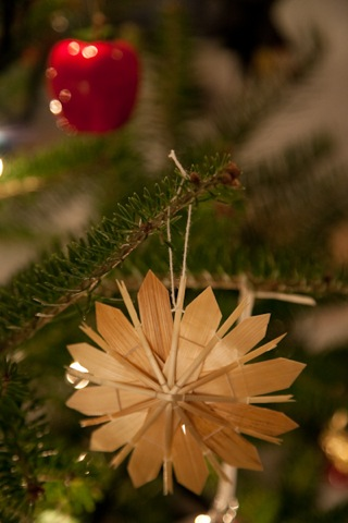 xmastree-4