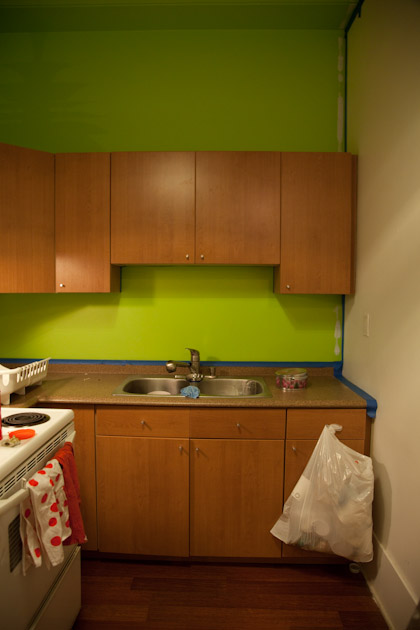 green kitchen (1 of 1)